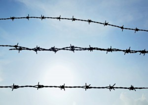 Procedimientos ante los jueces de vigilancia penitenciaria